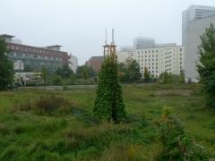 08 bohnenturm end of september.jpg